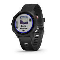Спортивные часы Garmin Forerunner 245 Music Black